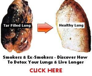 How To Detox Your Lungs After Quitting by How To Clean Your Lungs And Quit Lung