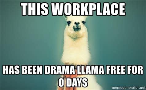 Drama Llama Meme - drama llama meme 28 images oh no the drama llama is