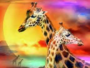 How To Decorate Your Desk At Work 21 Giraffe Wallpapers Backgrounds Images Freecreatives