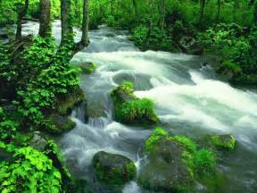 Amazing Pictures Of Nature Amazing Pictures Of Nature Scenery Funny Amp Amazing Images