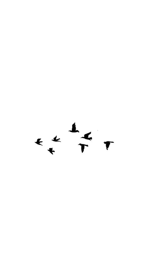 wallpaper for iphone 6 tumblr black and white birds iphone wallpaper pinteres