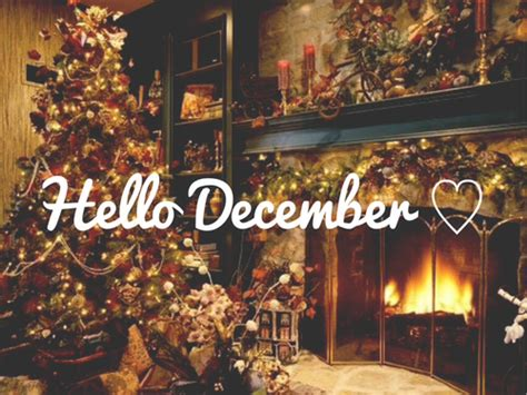 hello december image 1652459 by aaron s on favim com