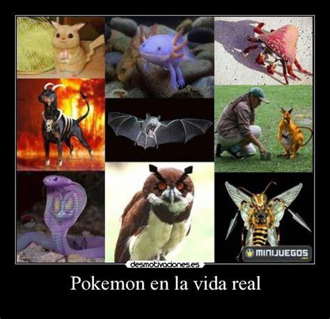 imagenes de up en la vida real pokemon en la vida real desmotivaciones