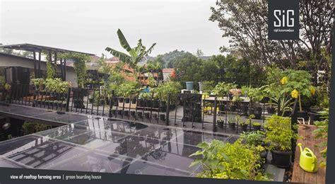 desain rumah atap rooftop prince seni bercocok tanam di rooftop garden kadangkala disebut