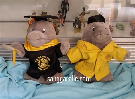 Boneka Wisuda Grosir pembuatan kostum maskot sanggaralle kostum badut