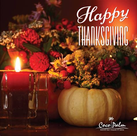 happy thanksgiving day full  joy  happiness   families  friends