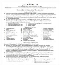 Resume Exles For Executive Level Executive Resume Format