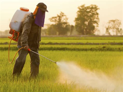 another reason another reason not to use pesticides easy health options 174