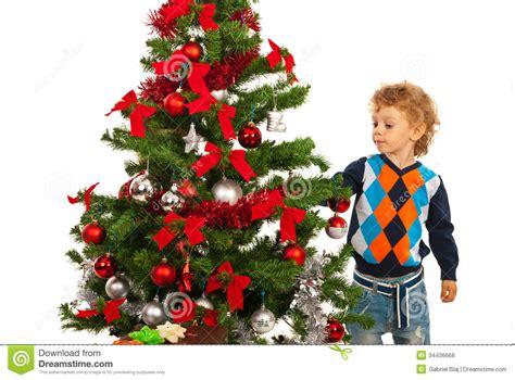 toddler boy arrange christmas tree royalty free stock