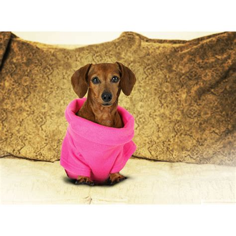 snuggie for dogs snuggie for dogs pink dogs walmart