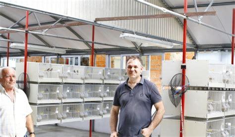 negozi animali pavia blitz in negozio di animali per liberare 156 uccellini