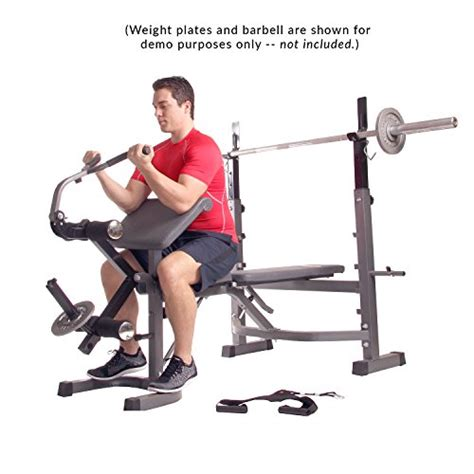 bench press with preacher curl body ch olympic weight bench with preacher curl leg