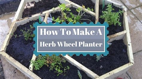 Herb Wheel Planter by A Herb Wheel Planter Thehomesteadingboards