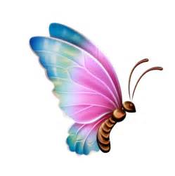 butterfly clipart transparent background clipartsgram