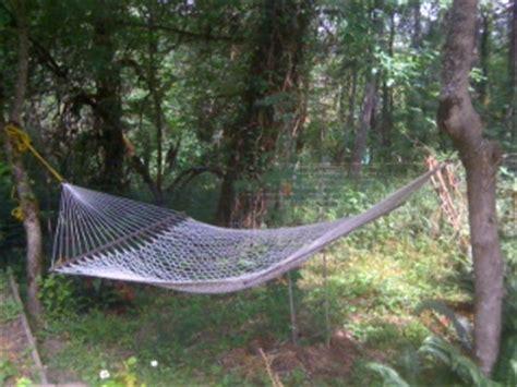 rope swing between two trees hammock time jade mountain buddha hall