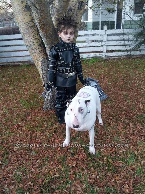 images  pet halloween costumes  pinterest