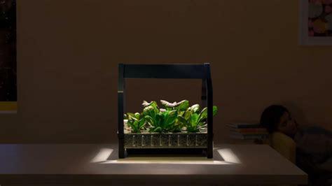 ikea hydroponics garden ikea launches indoor gardening kit