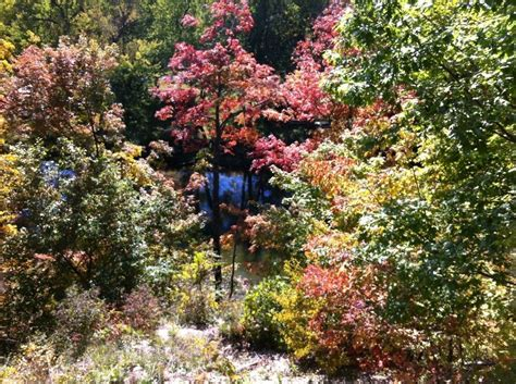 Indiana Botanic Gardens Best Garden Design Ideas Indiana Botanic Gardens