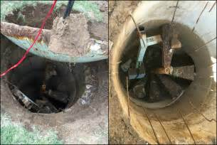 finds treasure in backyard finds bomb shelter buried in back yard photos