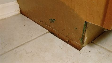 water leak cabinets bathroom how to deal with this water damage home