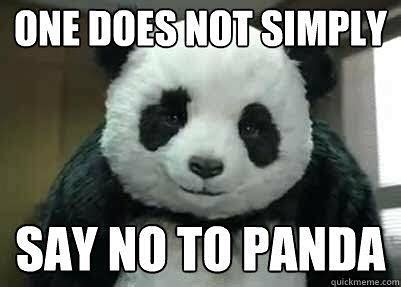 Drunk Panda Meme - 20 incredibly cute and funny panda memes sayingimages com