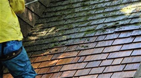leien schilderen dak laten ontmossen dak ontmossen dakreiniging prijzen