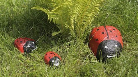 piedras para el jardin piedras pintadas para jard 237 n hogarmania