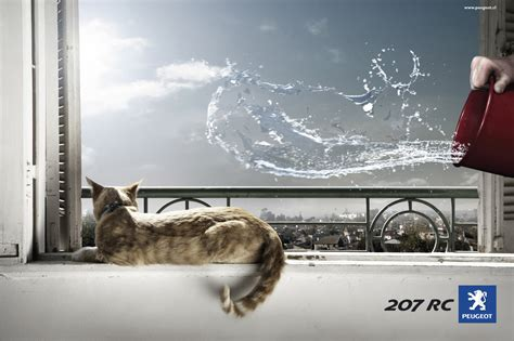 peugeot cat peugeot accelerated animals the inspiration room