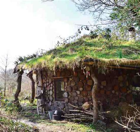 living roofs grow a green roof green homes earth news