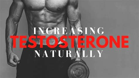 how to release more testosterone during weight bodybuilding wizard
