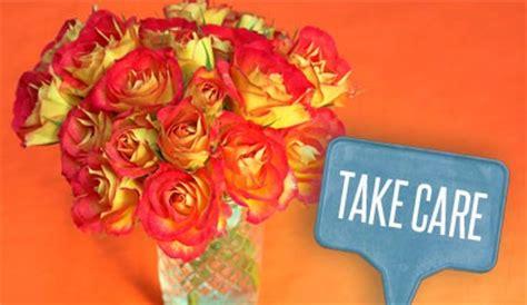 fiori per guarigione fiori da regalare per dire quot guarisci presto quot leitv