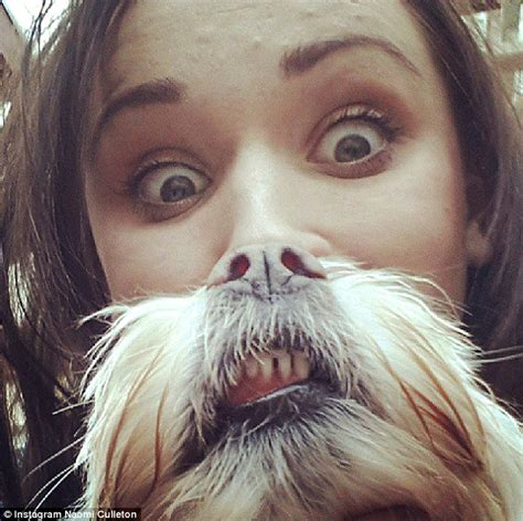 Cat Beard Meme - are dog beards the new cat beards pet owners create canine crazy internet meme daily mail online