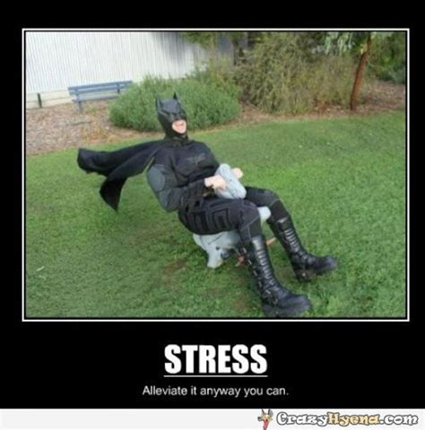 Stress Meme - stress alleviate it anyway