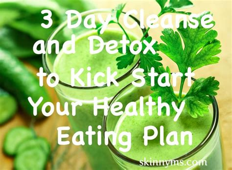 Food Matters Detox Plan by 25 Best Ideas About Three Day Detox On Three