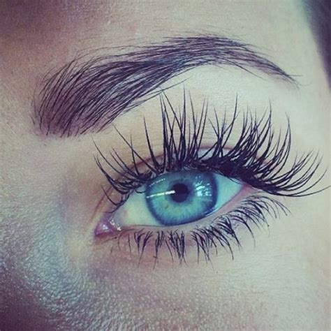 Best Conditioners For Eyelashes by 25 Best Ideas About Eyelash Conditioner On