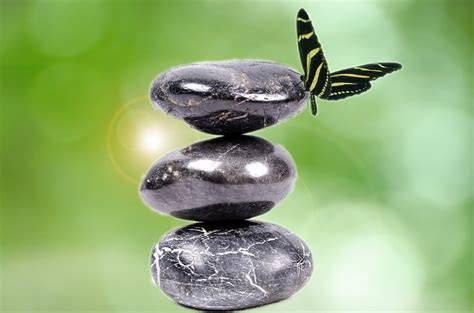 imagenes de piedras zen photo gratuite pierre zen blanc spa black image