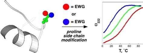 j protein chem neal zondlo research bioorganic chemistry and