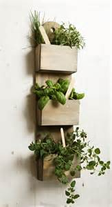 wall planter indoor wall mounted wooden kitchen herb planter kit with seeds