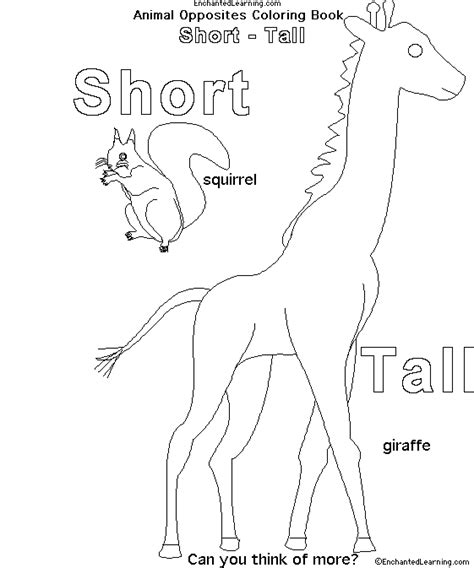 opposites coloring pages preschool animal opposites coloring book short tall
