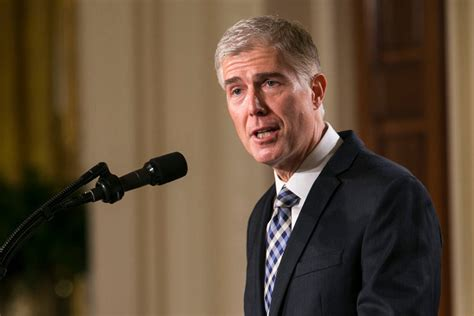 neil gorsuch new york times why liberals should back neil gorsuch the new york times
