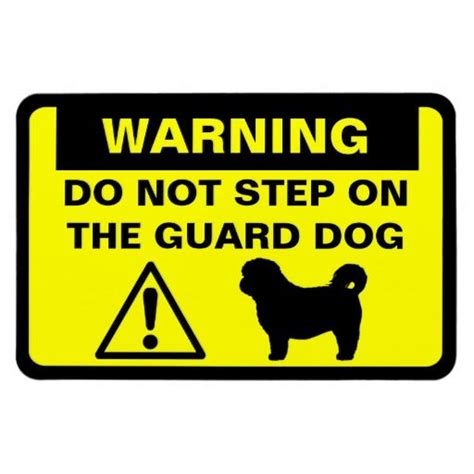 shih tzu guard 25 best ideas about guard on guard and