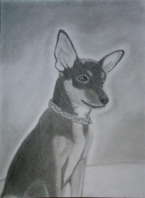 imagenes a lapiz de perritos dibujando un chihuahua blacky arte taringa