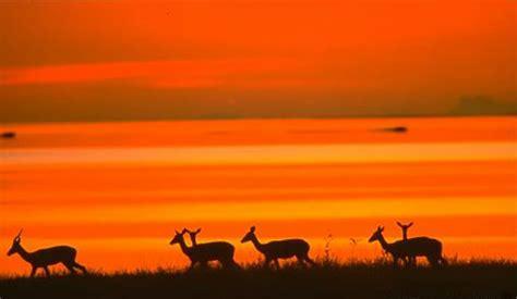 sudafrica imagenes amena viajes y turismo online 187 sud 225 frica misteriosa con