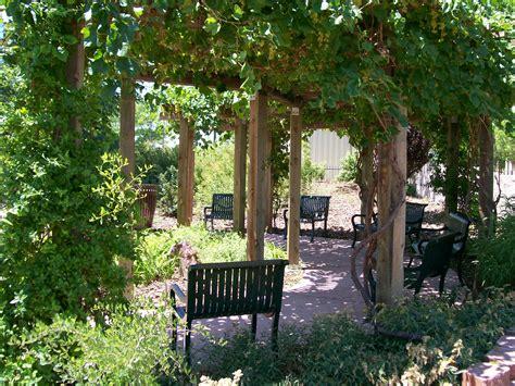 grape arbor grape arbor rancho waterwise garden