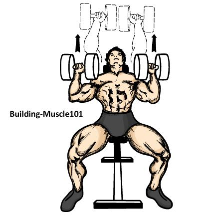 bench press with dumbbell incline dumbbell press