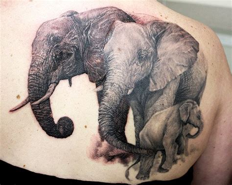 57 stylish elephant shoulder tattoo designs