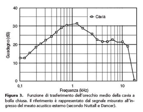 pressione orecchio interno fisiologia udito