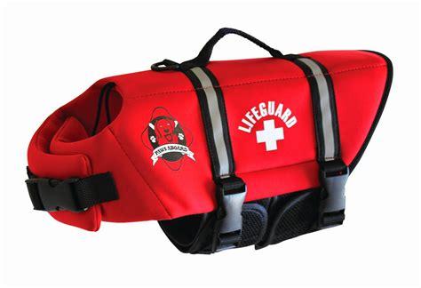 dog boat life jackets the modern bark dog training tips 5 best dog life