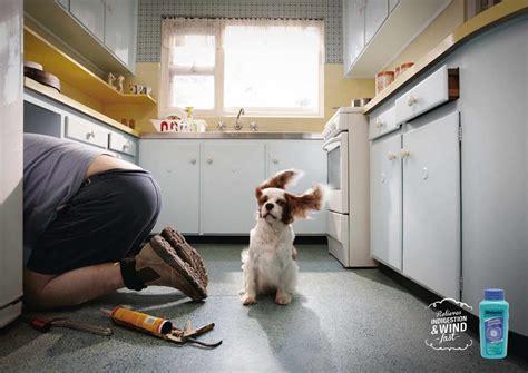 antacid for dogs mylanta antacid ads of the world