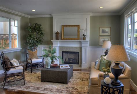 sage green sofa Living Room Traditional with area rug fire